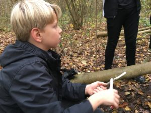 Cubs Coppice Westwood