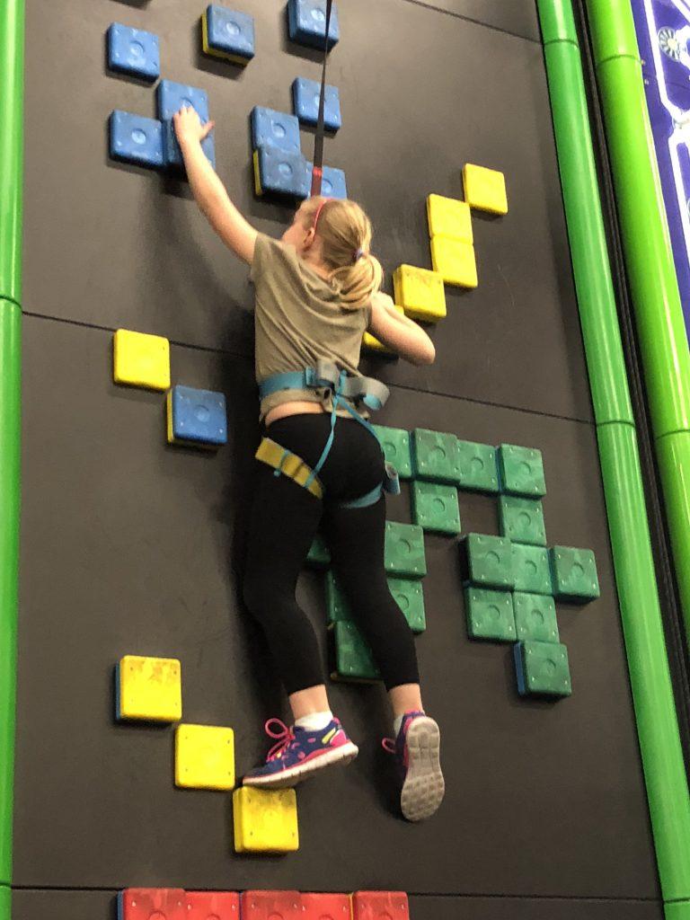 Cubs Scale Clip'n'Climb